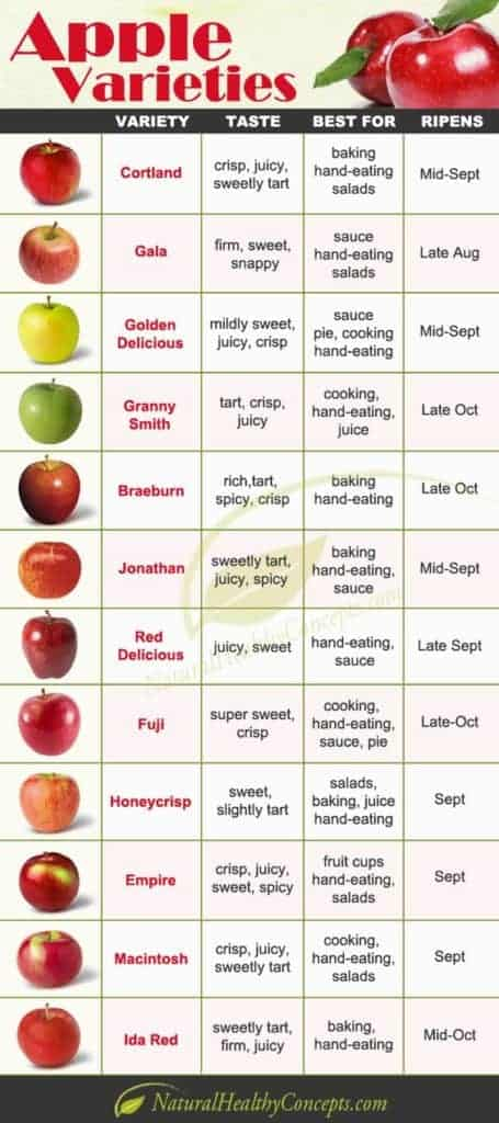 Apple Varieties that you can pick during your Hudson Valle Apple Picking Trips
