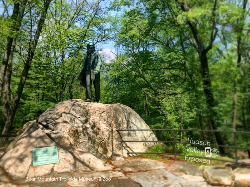 Visiting the Bear Mountain Zoo is one of the best Bear Mountain activities.