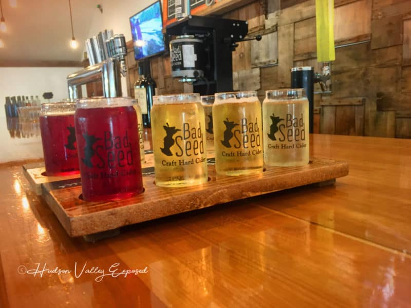 A Sampling of Hudson Valley Cider