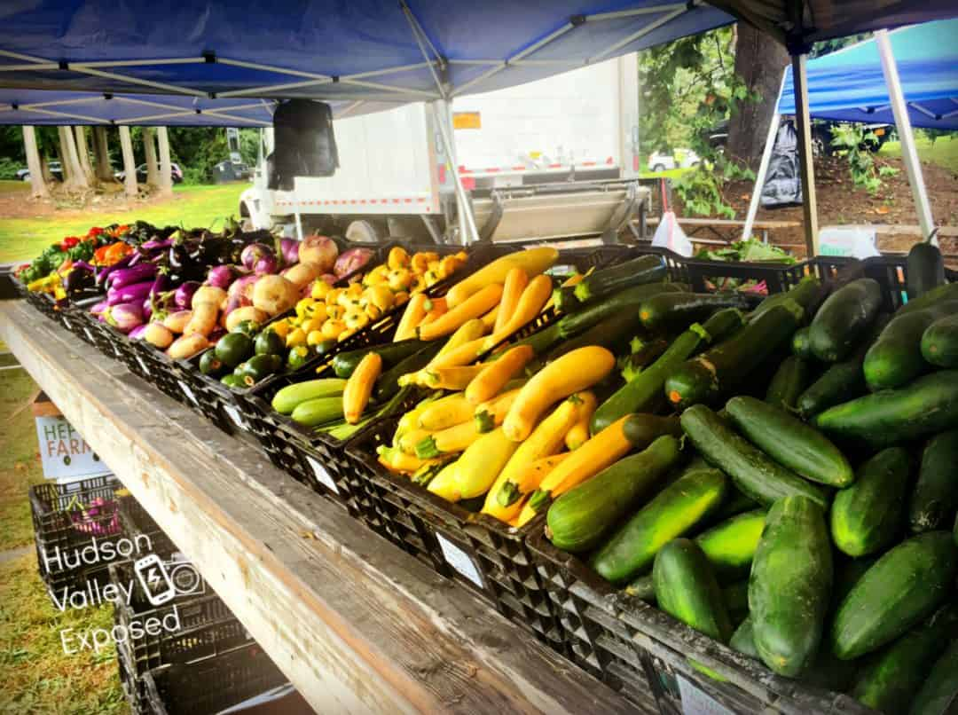 Vegetables at a Hudson Valley Farmers Market.