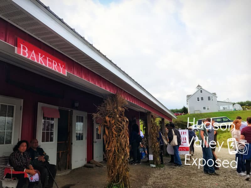 Stuart's Fruit Farm's Bakery features homemade pies, apple cider donuts and hot apple cider to enjoy on the farm