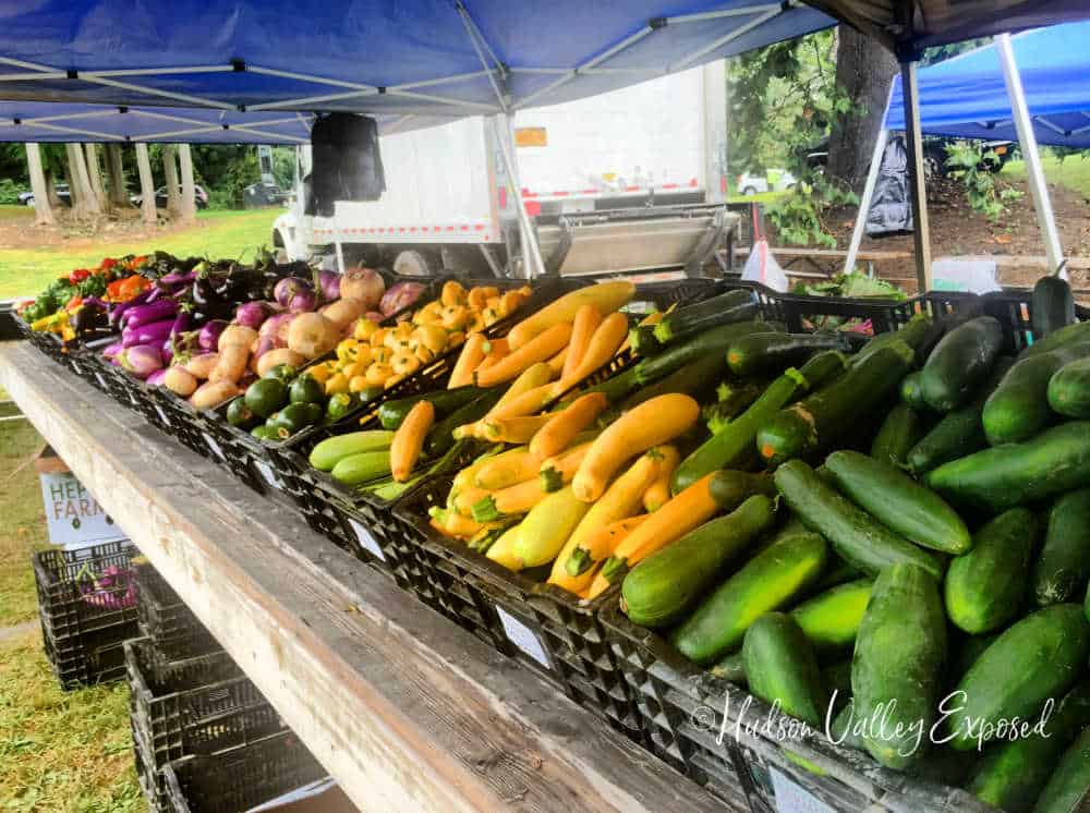 Fresh vegetables at the local farmers market in the Hudson Valley