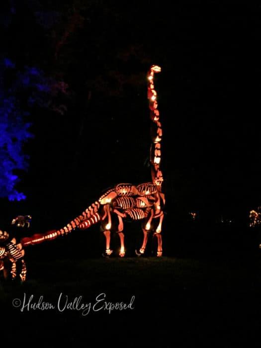 A dinosaur made out of pumkins at the great pumpkin blaze