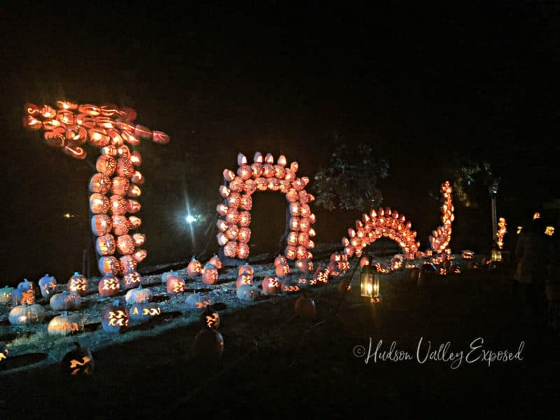 The dragon from the Great Jack O'Lantern Blaze in Westchester County, NY