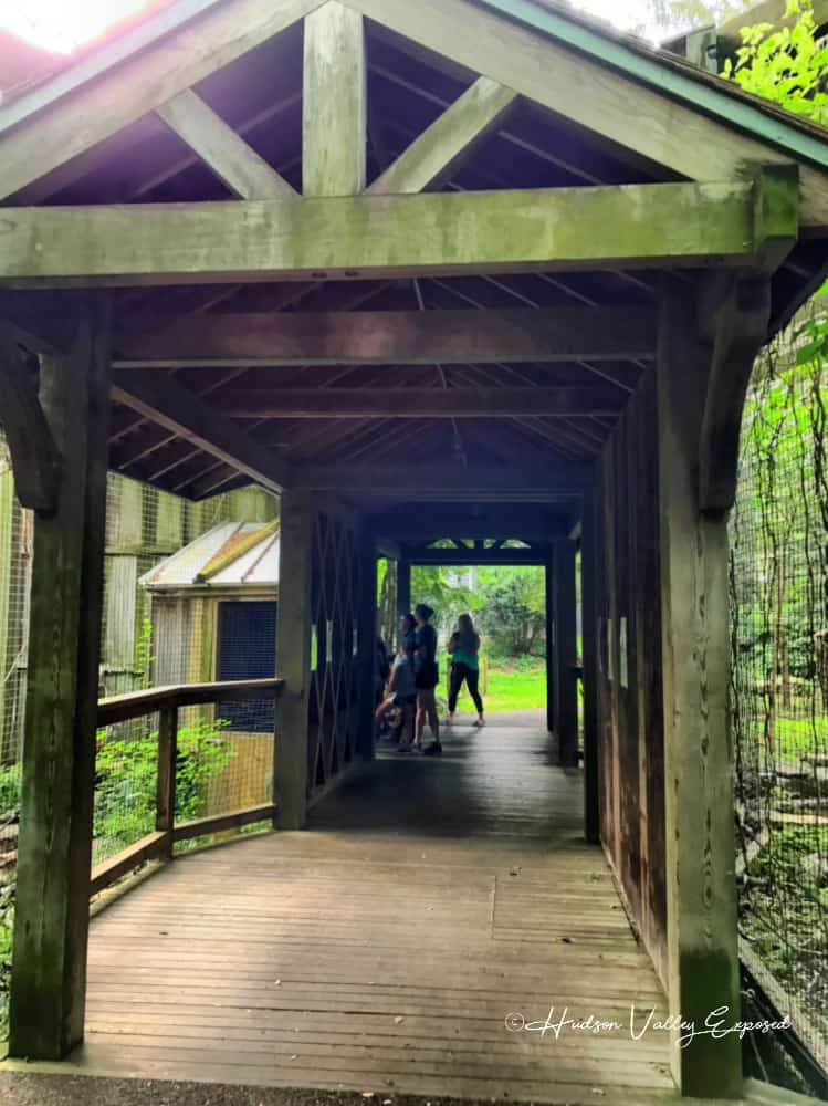 Covered Bridge at this Millbrook Zoo