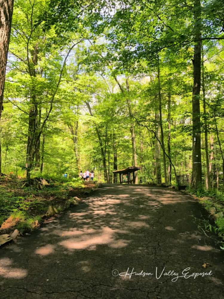 Hiking at the Bear Mountain State Park is one of the best Bear Mountain activities to do.