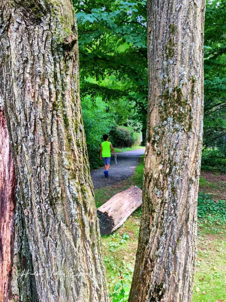 Boy walking along path at Trevor Zoo