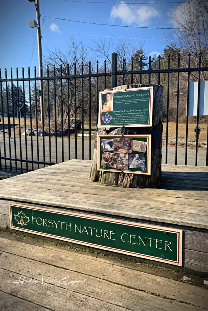 A memorial Tree at the entrance of Forsyth Nature Center in Kingston, NY