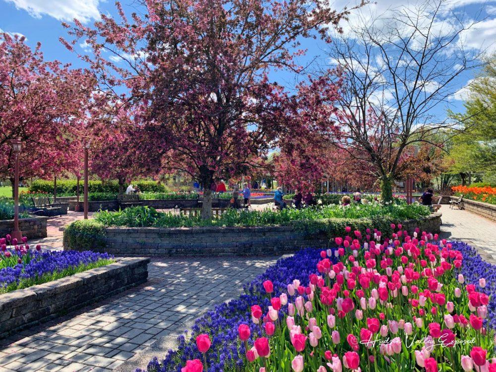 Orange County Arboretum Garden area