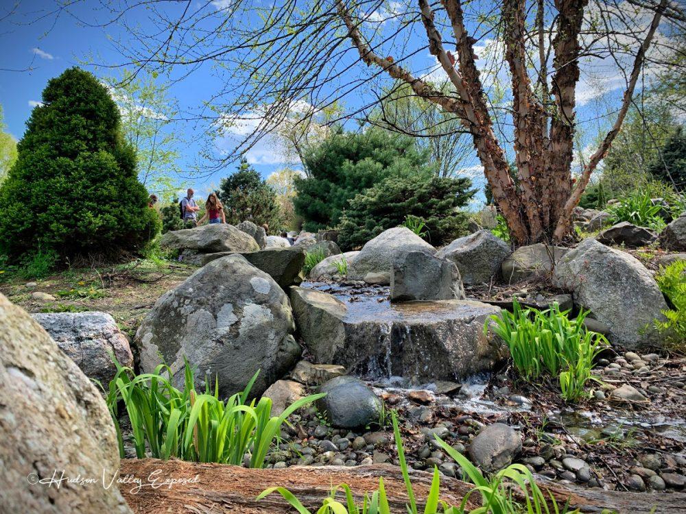 Japanese Garden at Orange County Arboretum
