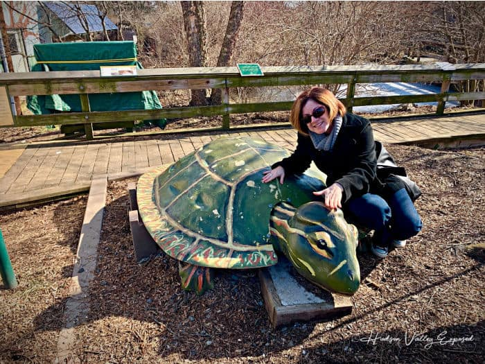 Turtle statue at Forsyth Nature Center
