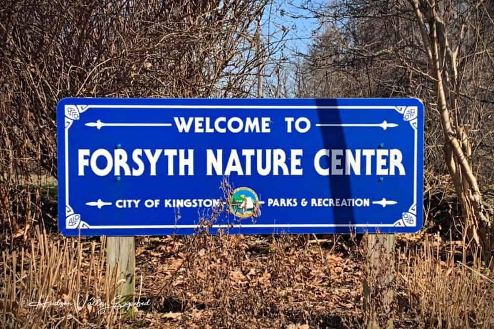Sign in Forsyth Park for Forsyth Nature Center