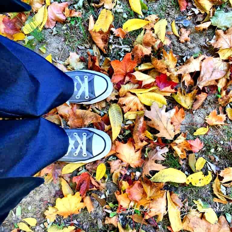 Hudson Valley Fall Foliage