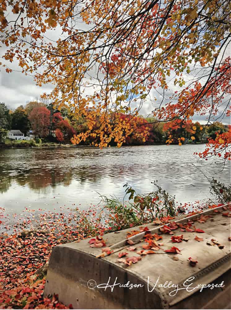 Hudson Valley Fall Foliage in Carmel, NY