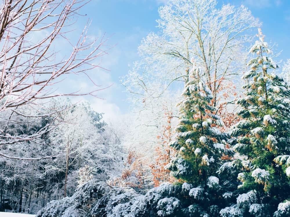 Hudson Valley Winter Activities