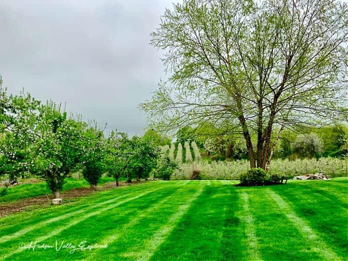Hudson Valley Spring Break
